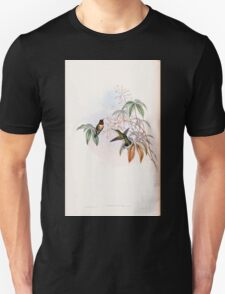 A monograph of the Trochilidæ or family of humming birds by John Gould 1861 V3 066 Trochilus Colubris T-Shirt
