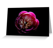 Flower Bomb Greeting Card