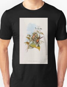 A monograph of the Trochilidæ or family of humming birds by John Gould 1861 V1 220 Phaethornis Syrmatophorus T-Shirt