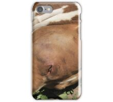 Pit Bull Dog in a Garden iPhone Case/Skin