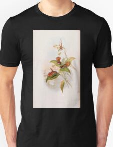 A monograph of the Trochilidæ or family of humming birds by John Gould 1861 V3 092 Selasphorus Rufus T-Shirt