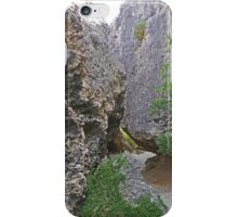 The Walk to the Rockpool iPhone Case/Skin