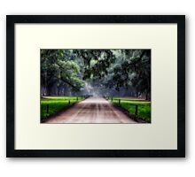 Live Oak and Spanish Moss Framed Print