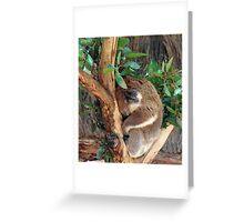 Kipping Koala Greeting Card
