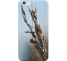 I Have Decided iPhone Case/Skin
