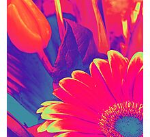 Bright Pink Abstract Flowers Photographic Print