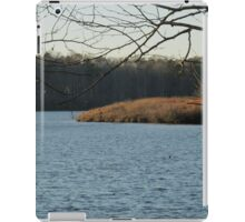 Beaverdam Park Reservoir  iPad Case/Skin