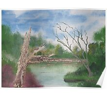 Dead trees by the pond. Poster