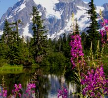 fireweed, picture lake, and mt shuksan, washington usa Sticker