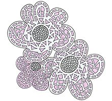 Shocking Pink Lace Flowers Photographic Print