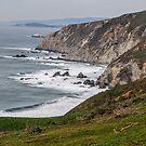 Ocean Bluffs by Laurie Puglia