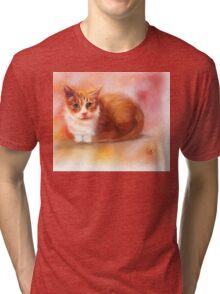 Crystal the Toothless Cat Tri-blend T-Shirt