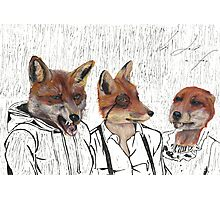 Its just a fox! Photographic Print