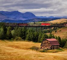 Montana Country Barn by Kathy Weaver