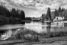 Loch Ard in Aberfoyle by Jeremy Lavender Photography