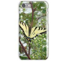 Butterfly on Blackberry Bush iPhone Case/Skin