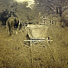 A Horse and Cart at Rest in Barda Village, Romania in an old print style by Dennis Melling