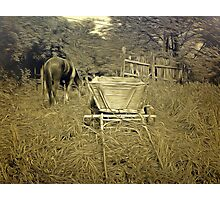 A Horse and Cart at Rest in Barda Village, Romania in an old print style Photographic Print
