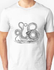 Vintage Boa Constrictor Snake Skeleton Illustration Retro 1800s Black and White Snakes  Unisex T-Shirt