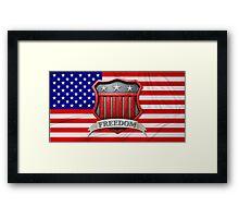 USA Shield Framed Print