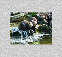 Group Of Small Otters from Escot, Ottery St Mary Devon Womens Fitted T-Shirt