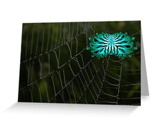Abstract Spider on Web Greeting Card