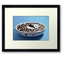 Chocolate Creek Framed Print