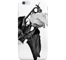 Spring Blooms With Flowers Dead iPhone Case/Skin
