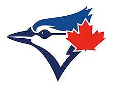 Toronto Blue Jays TEAM LOGO Photographic Print