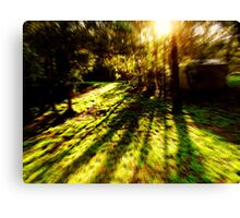 Nature Rush Canvas Print