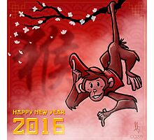 0038 - Year of the Monkey Photographic Print