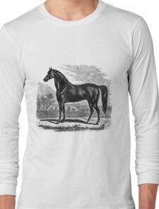 Vintage Morgan Horse Equestrian Horses Long Sleeve T-Shirt