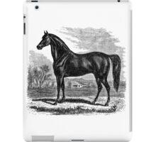 Vintage Morgan Horse Equestrian Horses iPad Case/Skin