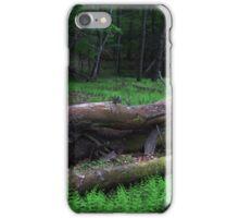 Fallen Tree iPhone Case/Skin