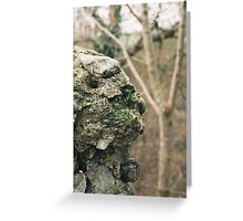 Flint Wall Greeting Card