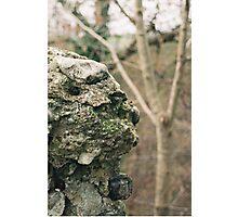 Flint Wall Photographic Print