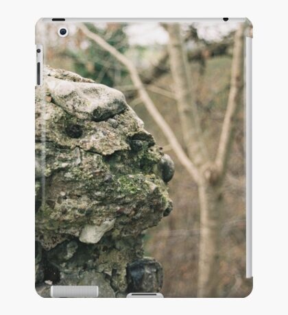 Flint Wall iPad Case/Skin