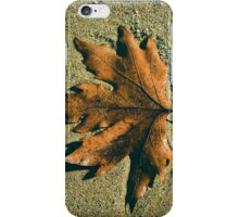 Leaf on the sand iPhone Case/Skin