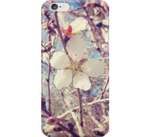 Beautiful Blossoms ... iPhone Case/Skin