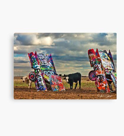 Cadillac Cows Canvas Print