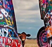 Cadillac Cows III by Doug Graybeal