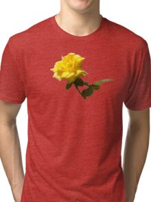 Isolated a single golden yellow rose  with green rose leaves Tri-blend T-Shirt