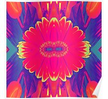 Abstract Flower Collage Colour Burst Poster
