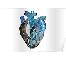 Blue human heart with a whale inside Poster