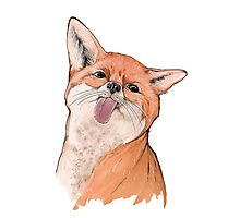 Silly fox Photographic Print