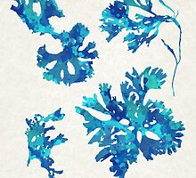 Abstract Seaweed Art by Christina Rollo