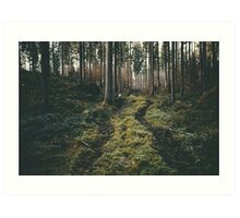 Boy walking through mystic forest landscape photography Art Print