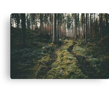 Boy walking through mystic forest landscape photography Canvas Print