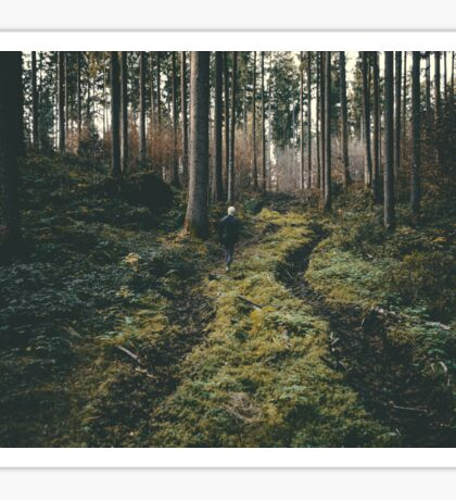 Boy walking through mystic forest landscape photography Sticker