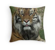 The True King of the Jungle Throw Pillow